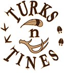 Turks N Tines